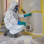Mold-Removal-Services-in-Parsippany-Troy Hills, NJ